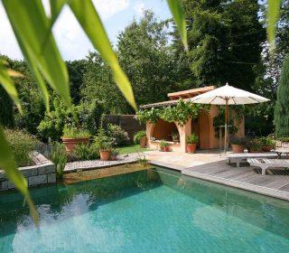 Garten mit Palme