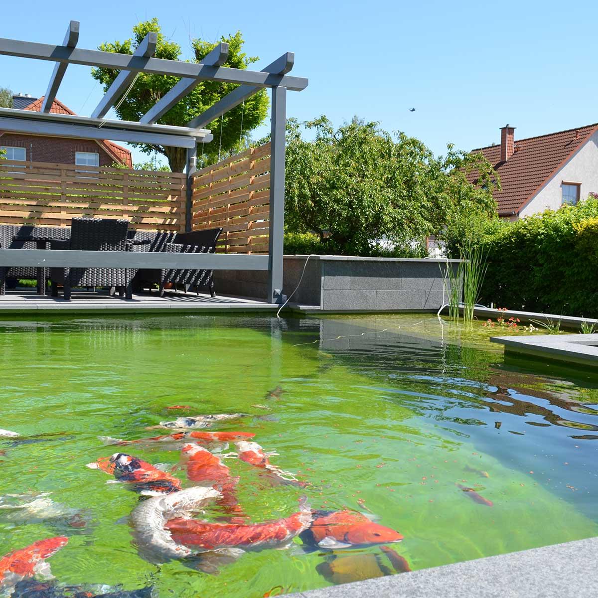Garten Teiche gartenteich von friedrichs galabau aus braunschweig