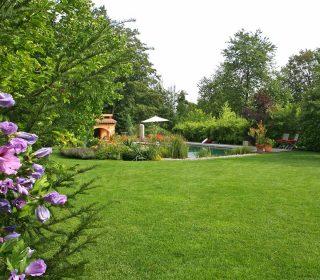 Garten mit grünem Rasen