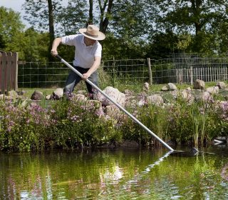 Teichpflege